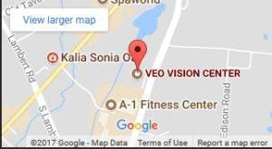 veo vision map